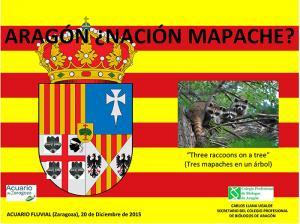 ARAGÓN ¿NACIÓN MAPACHE?