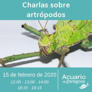 CHARLAS DE ARTRÓPODOS