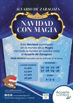 Esta Navidad… sumérgete en la magia en el Acuario de Zaragoza.