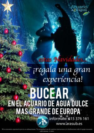 Estas Navidades Regala Experiencias en el Acuario de Zaragoza