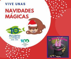 Navidades Mágicas en el Acuario de Zaragoza con la Chistera Encantada