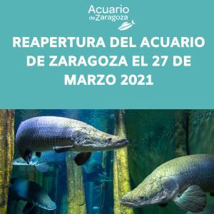 REAPERTURA DEL ACUARIO DE ZARAGOZA 27 DE MARZO DEL 2021