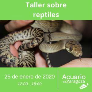 Taller de reptiles en el Acuario de Zaragoza
